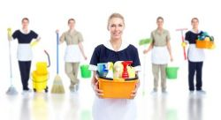Expert Team of Cleaners